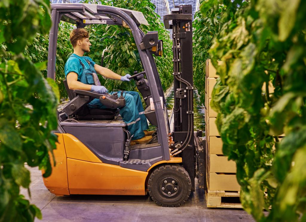 Young Attractive Man Working On Electric Forklift In Greenhouse
